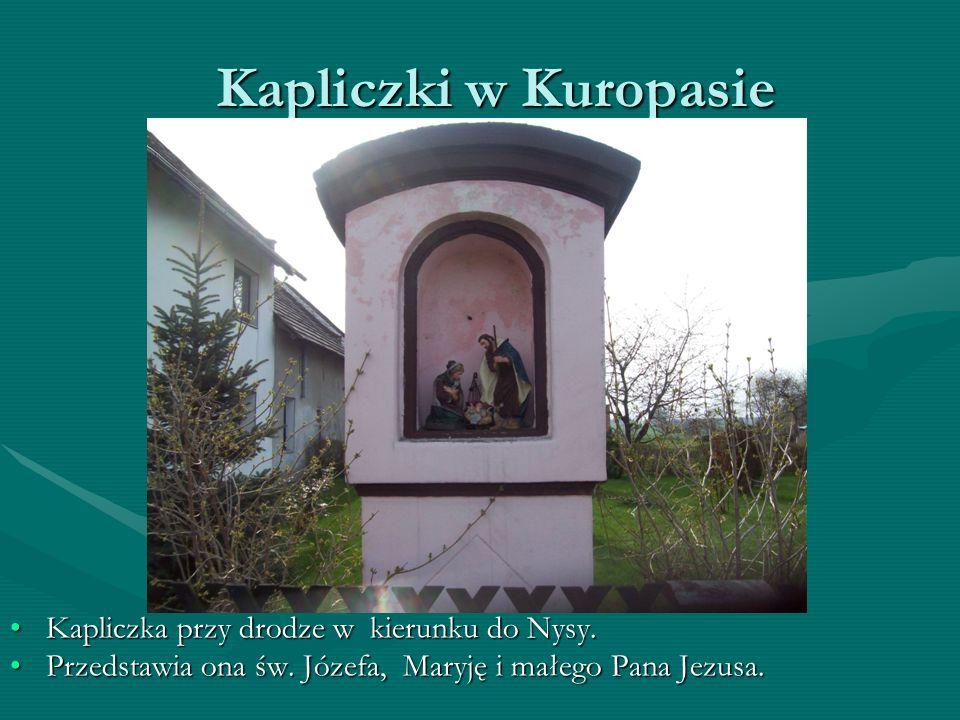 Kapliczki w Kuropasie Kapliczka przy drodze w kierunku do Nysy.