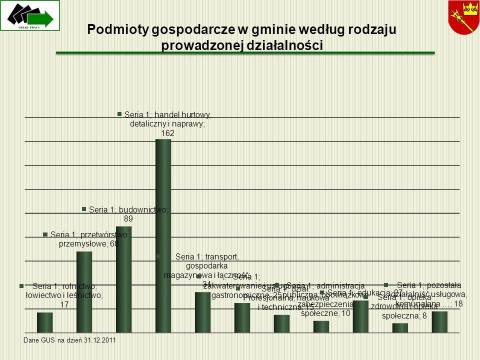 Podmioty gospodarcze w gminie według rodzaju prowadzonej działalności