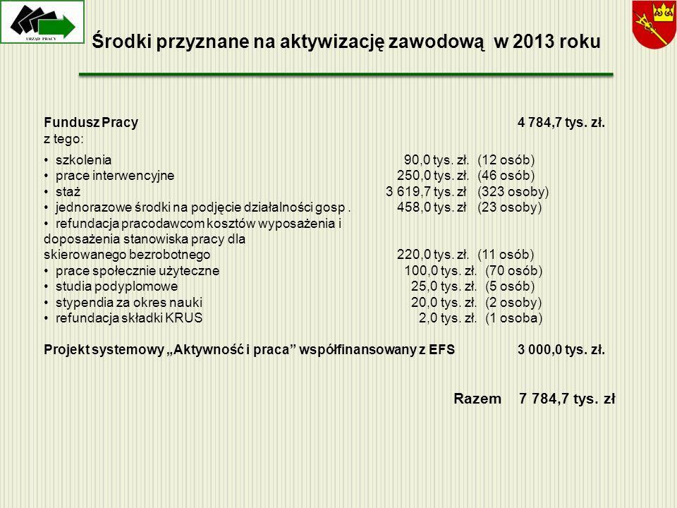 Środki przyznane na aktywizację zawodową w 2013 roku