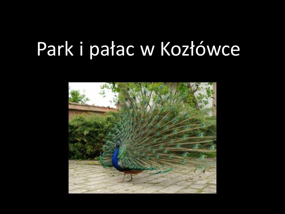 Park i pałac w Kozłówce