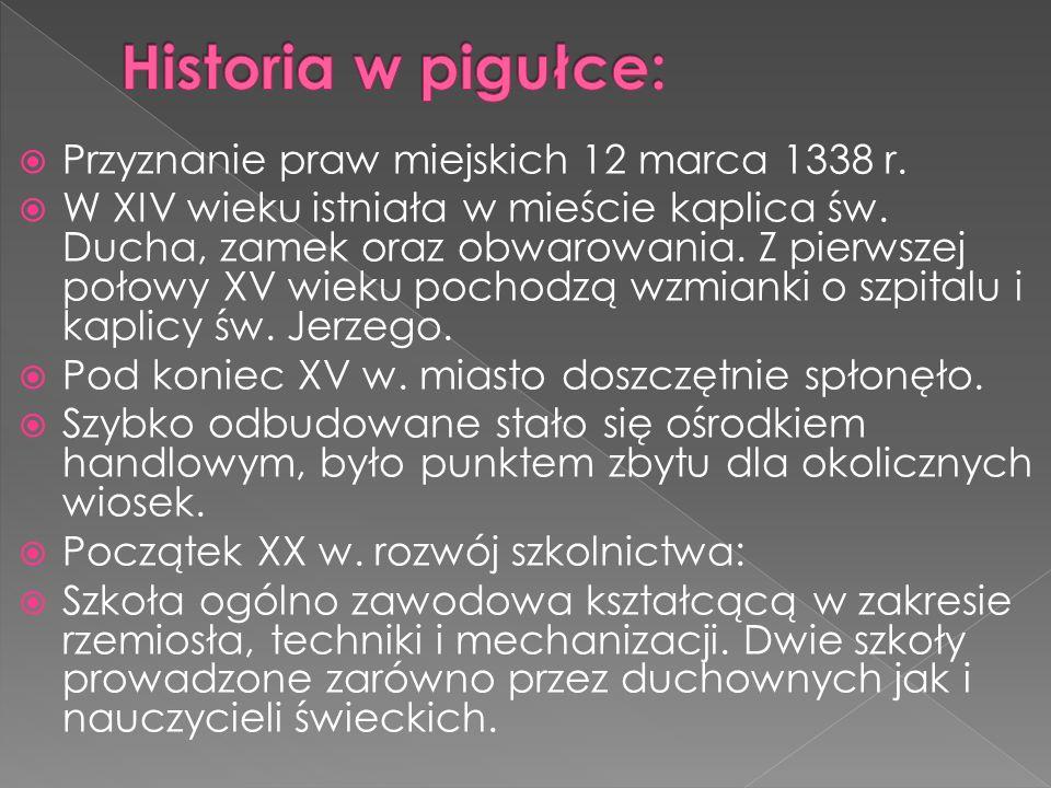 Historia w pigułce: Przyznanie praw miejskich 12 marca 1338 r.