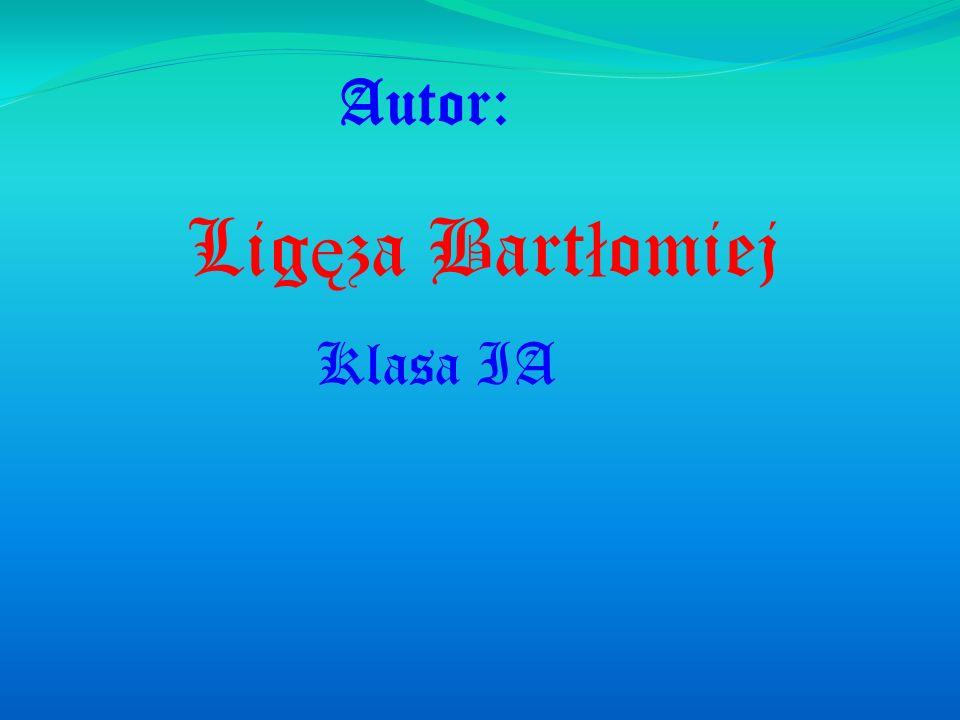 Autor: Ligęza Bartłomiej Klasa IA