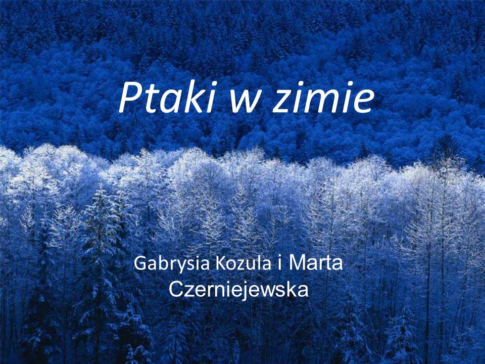 Gabrysia Kozula i Marta Czerniejewska