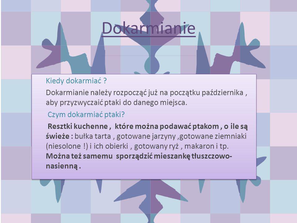 Dokarmianie