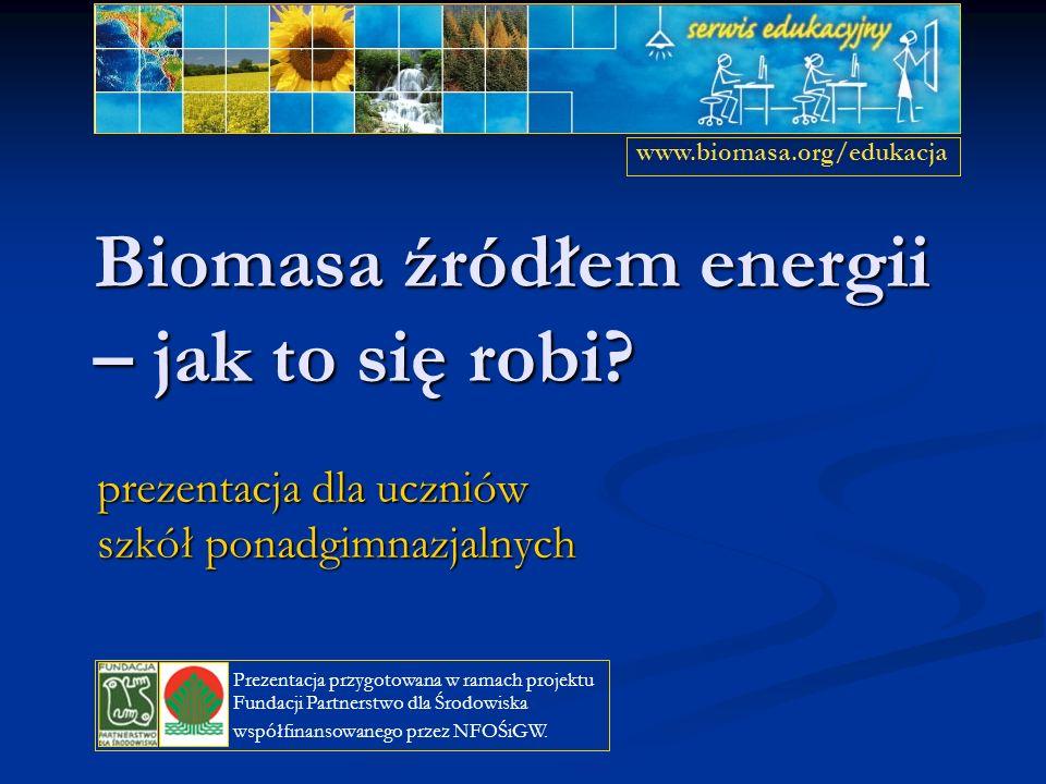 Biomasa źródłem energii – jak to się robi