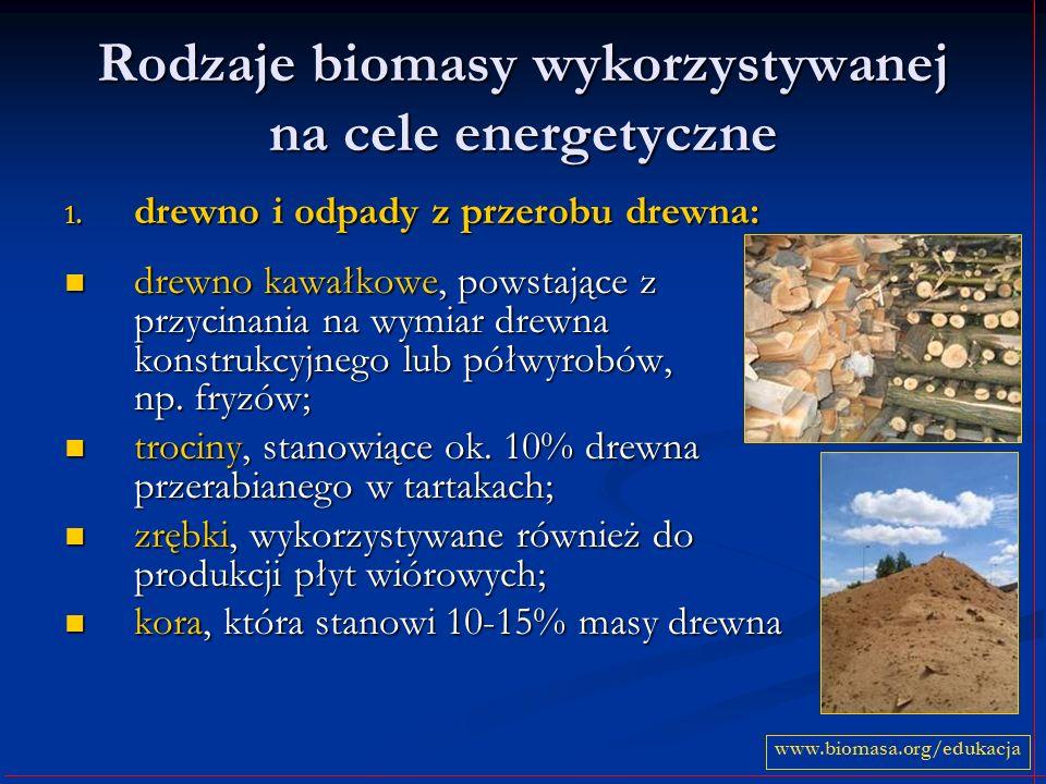 Rodzaje biomasy wykorzystywanej na cele energetyczne
