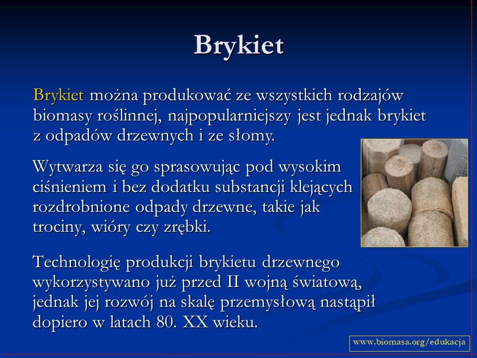 Brykiet Brykiet można produkować ze wszystkich rodzajów biomasy roślinnej, najpopularniejszy jest jednak brykiet z odpadów drzewnych i ze słomy.