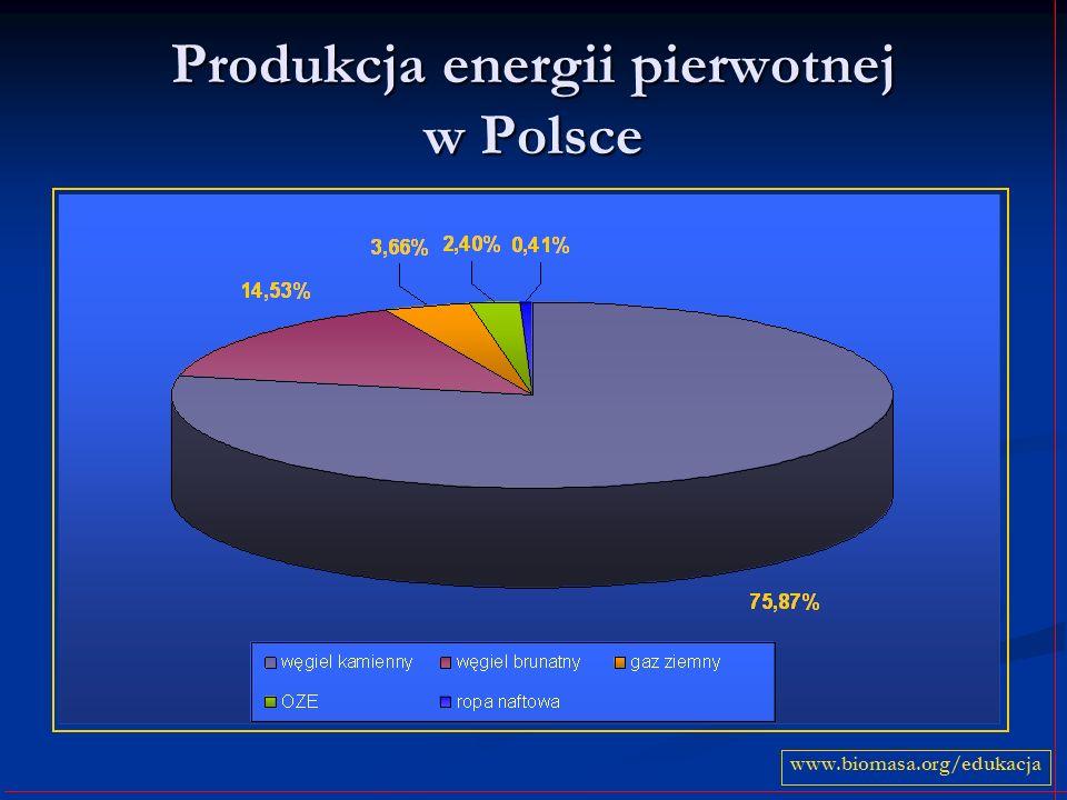 Produkcja energii pierwotnej w Polsce