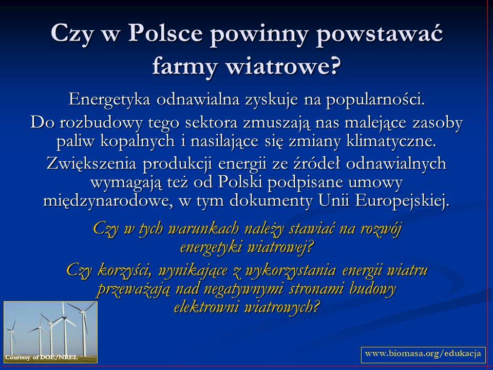 Czy w Polsce powinny powstawać farmy wiatrowe