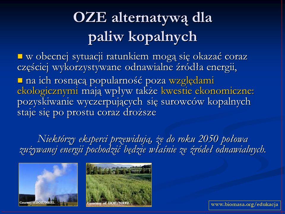 OZE alternatywą dla paliw kopalnych