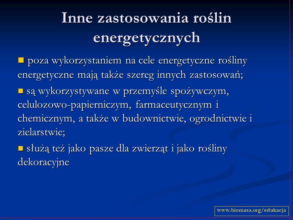 Inne zastosowania roślin energetycznych