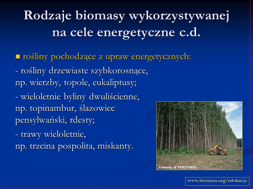 Rodzaje biomasy wykorzystywanej na cele energetyczne c.d.