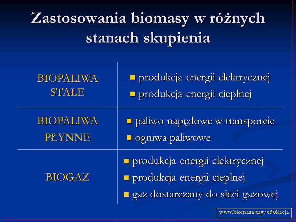 Zastosowania biomasy w różnych stanach skupienia