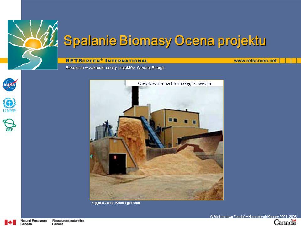 Ciepłownia na biomasę, Szwecja