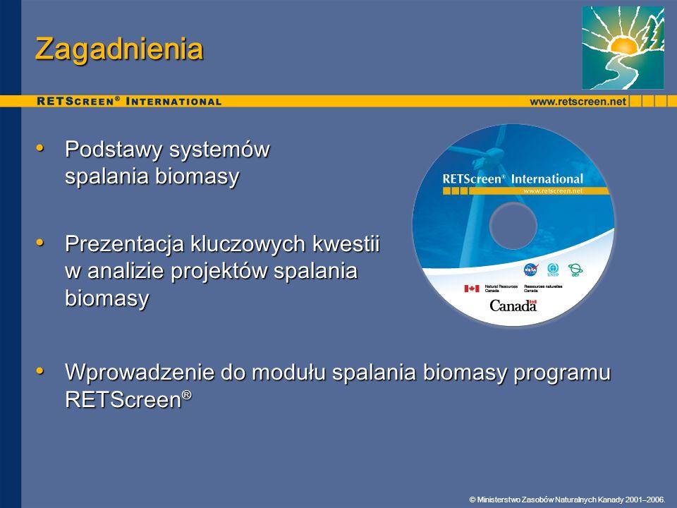 Zagadnienia Podstawy systemów spalania biomasy