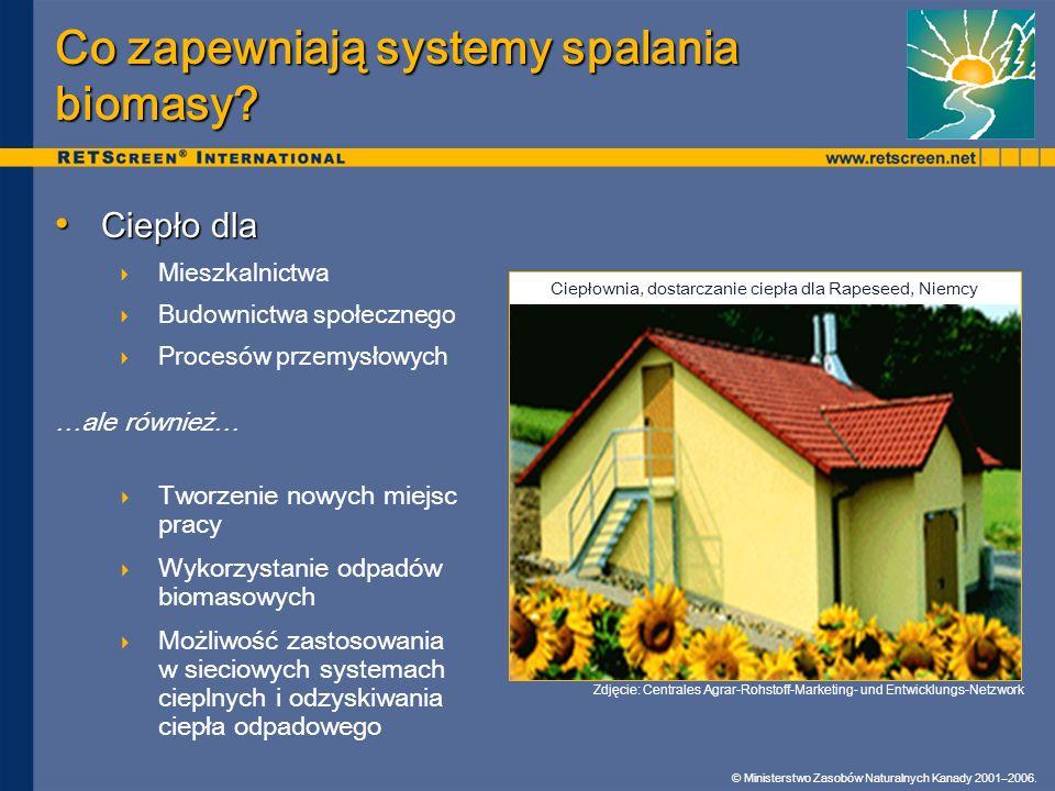 Co zapewniają systemy spalania biomasy