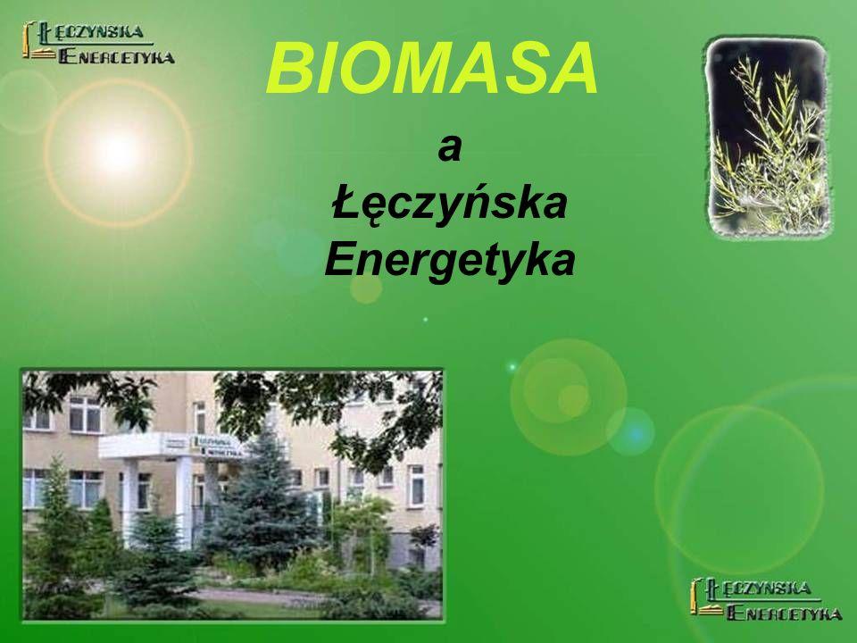 a Łęczyńska Energetyka