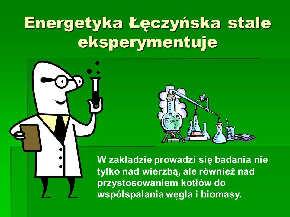Energetyka Łęczyńska stale eksperymentuje