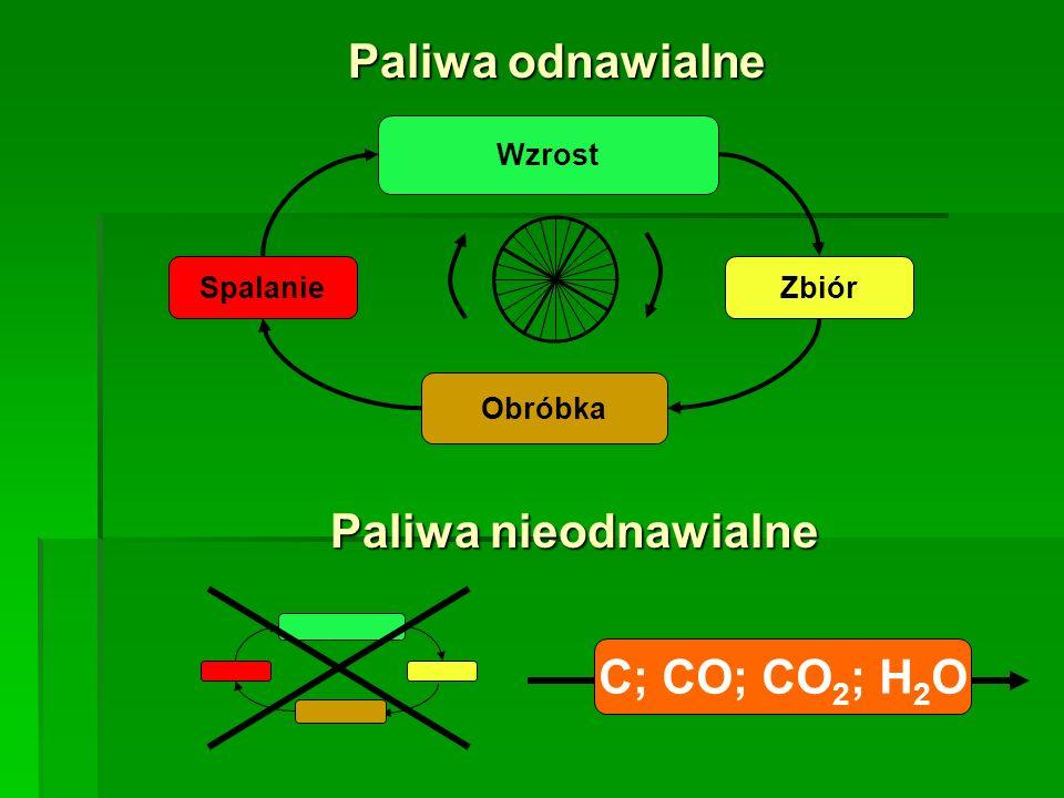 Paliwa odnawialne Paliwa nieodnawialne C; CO; CO2; H2O Spalanie Wzrost