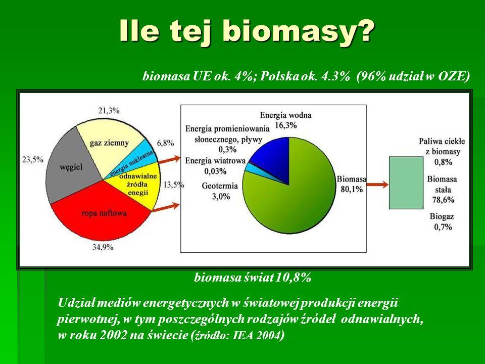 Ile tej biomasy biomasa UE ok. 4%; Polska ok. 4.3% (96% udział w OZE)