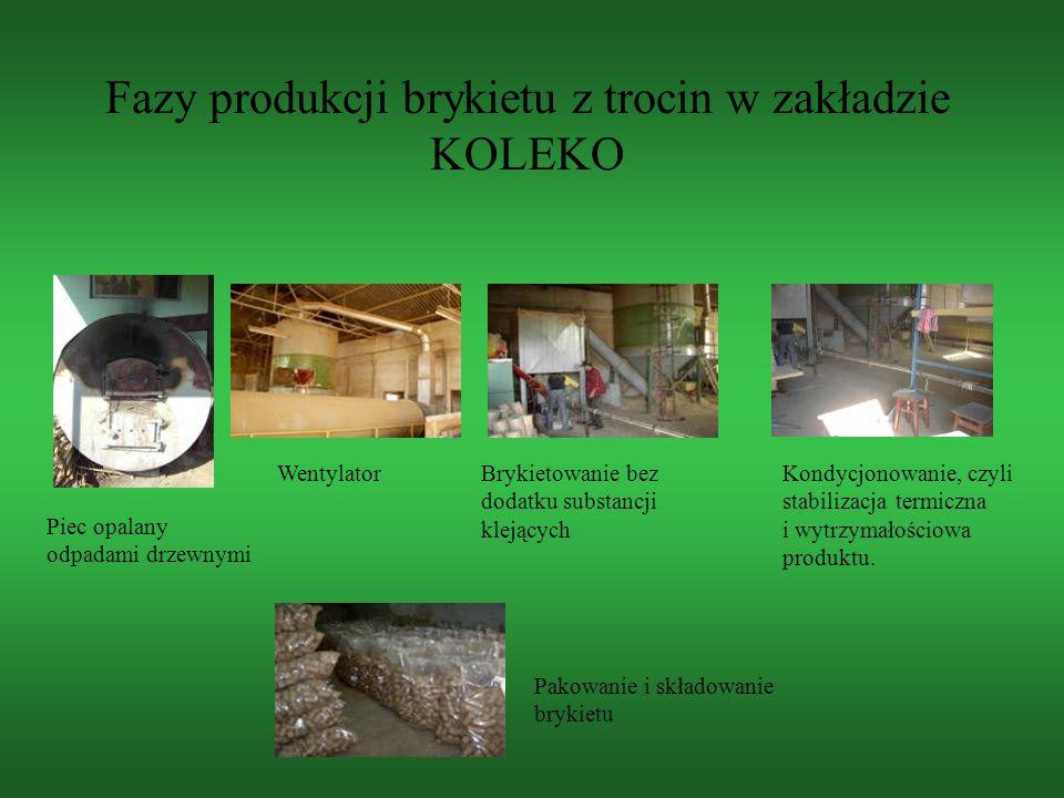 Fazy produkcji brykietu z trocin w zakładzie KOLEKO