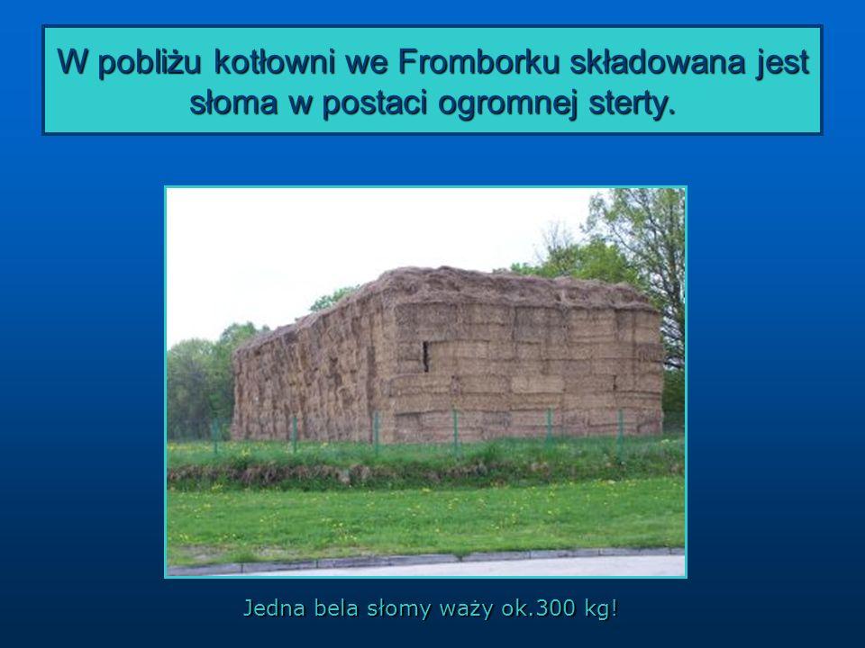 W pobliżu kotłowni we Fromborku składowana jest słoma w postaci ogromnej sterty.