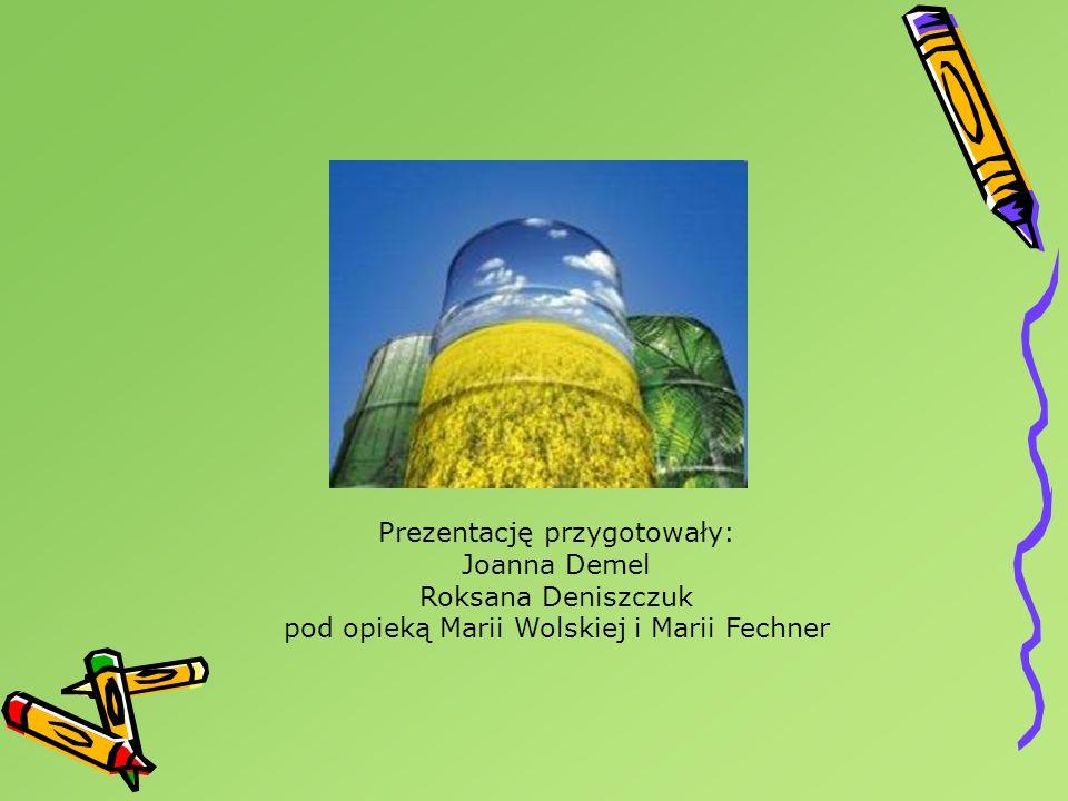 Prezentację przygotowały: Joanna Demel Roksana Deniszczuk