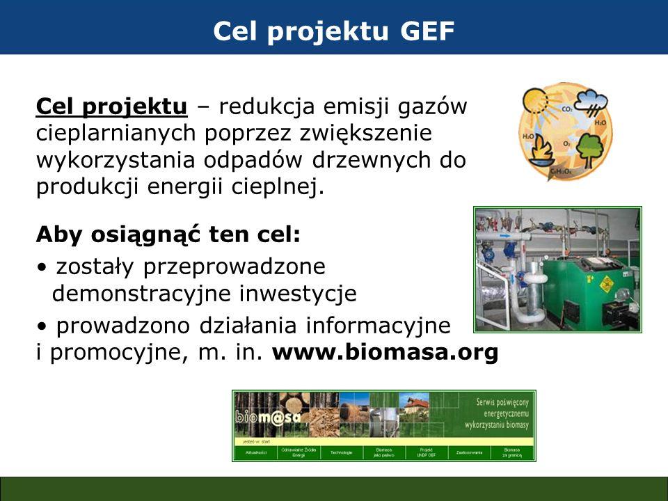 Cel projektu GEF