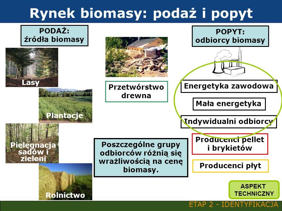 Rynek biomasy: podaż i popyt