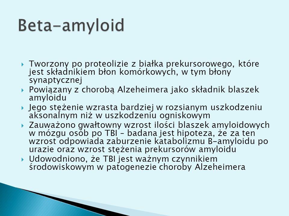 Beta-amyloid Tworzony po proteolizie z białka prekursorowego, które jest składnikiem błon komórkowych, w tym błony synaptycznej.