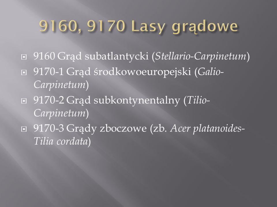 9160, 9170 Lasy grądowe 9160 Grąd subatlantycki (Stellario-Carpinetum)