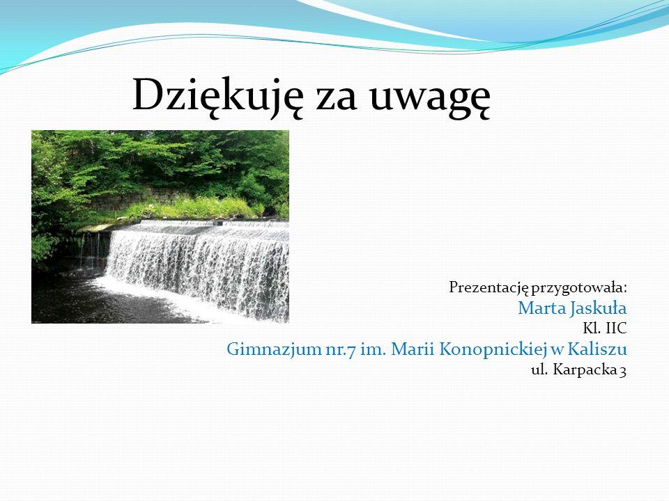 Dziękuję za uwagę Marta Jaskuła