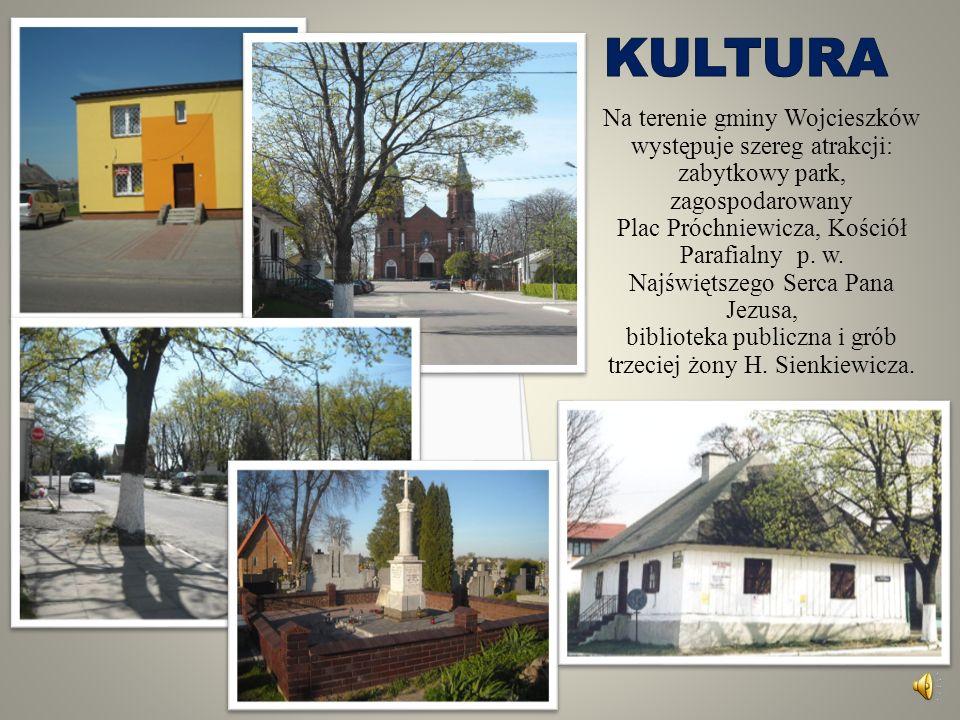 Kultura Na terenie gminy Wojcieszków występuje szereg atrakcji: zabytkowy park, zagospodarowany. Plac Próchniewicza, Kościół.