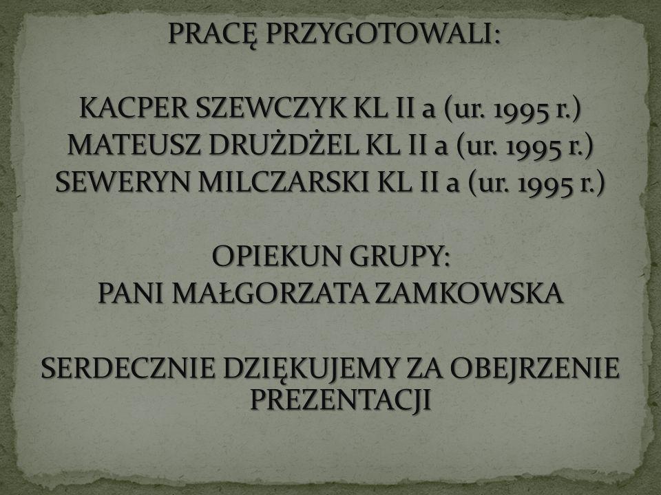 KACPER SZEWCZYK KL II a (ur. 1995 r.)