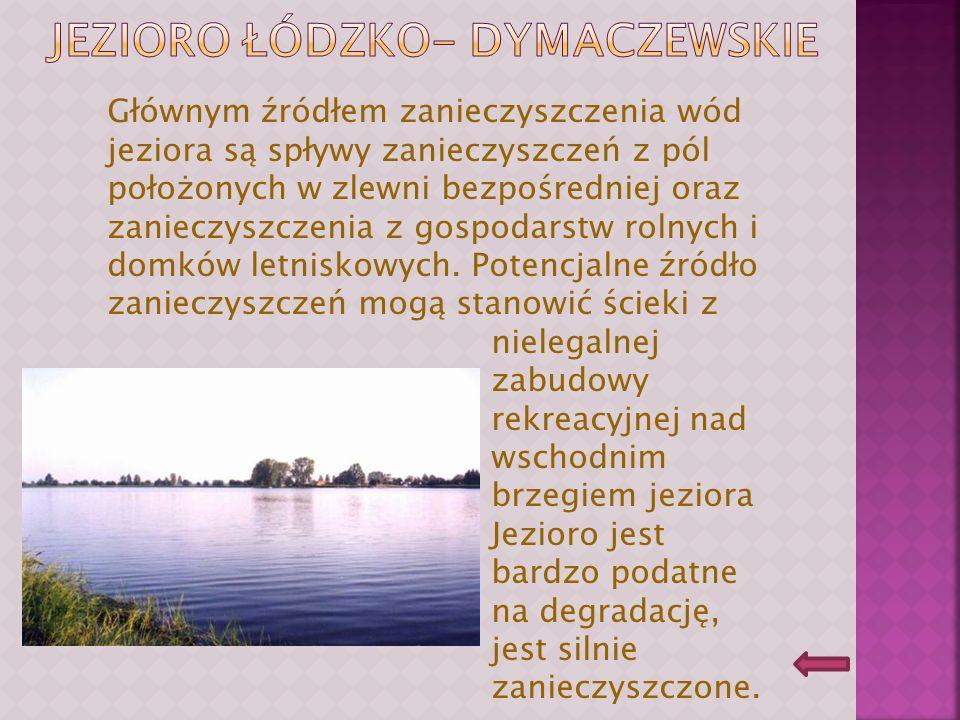 Jezioro Łódzko- dymaczewskie