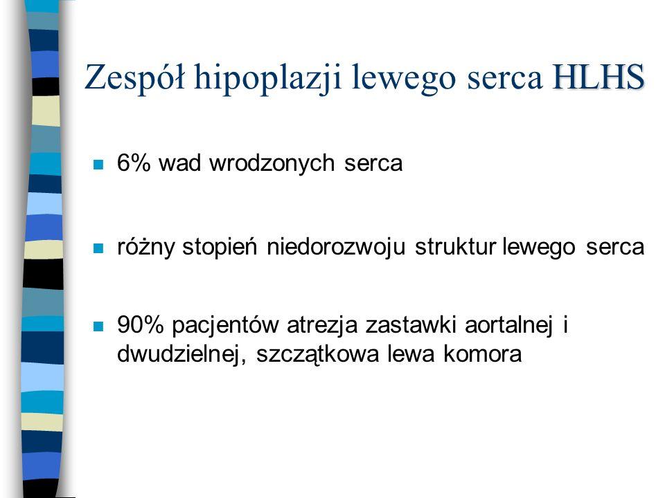 Zespół hipoplazji lewego serca HLHS