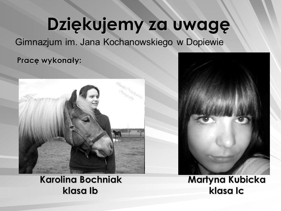 Gimnazjum im. Jana Kochanowskiego w Dopiewie