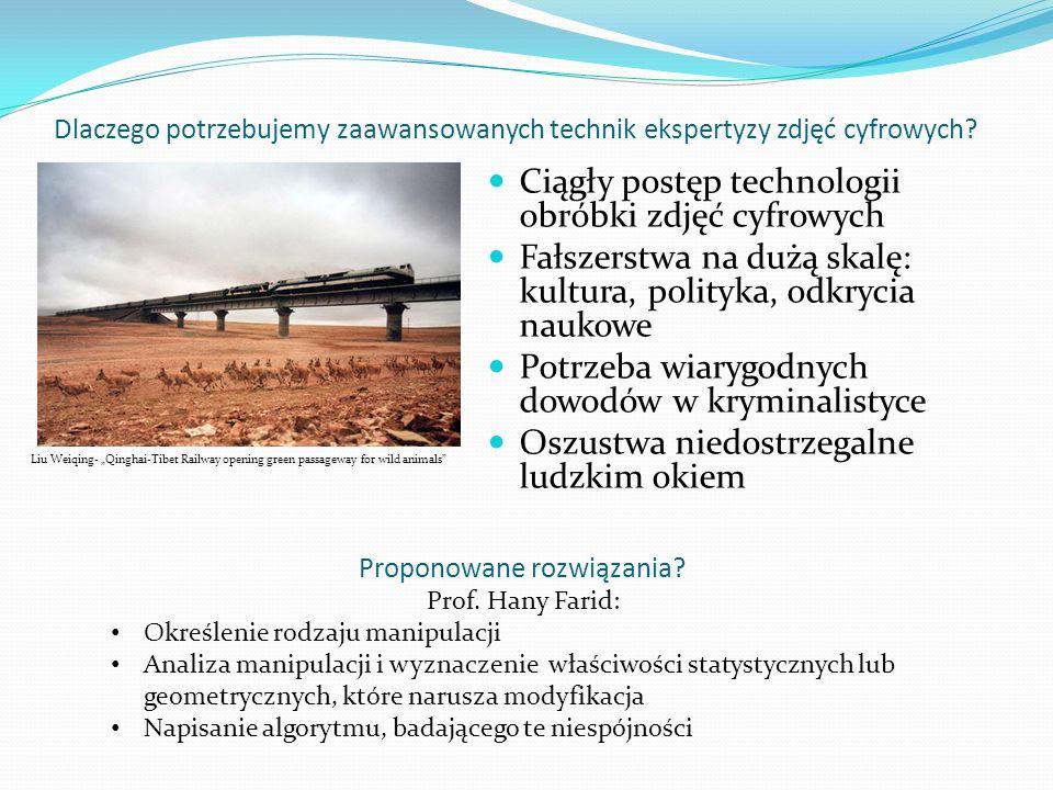 Proponowane rozwiązania Prof. Hany Farid: