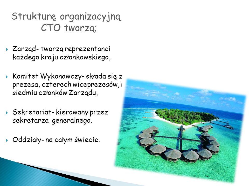 Strukturę organizacyjną CTO tworzą;