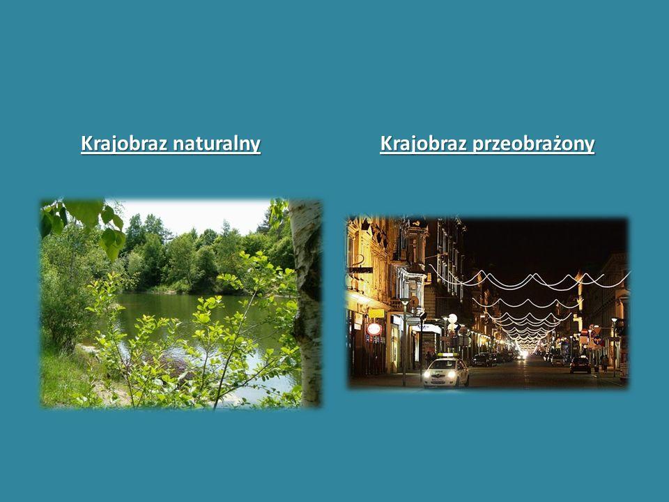 Krajobraz przeobrażony