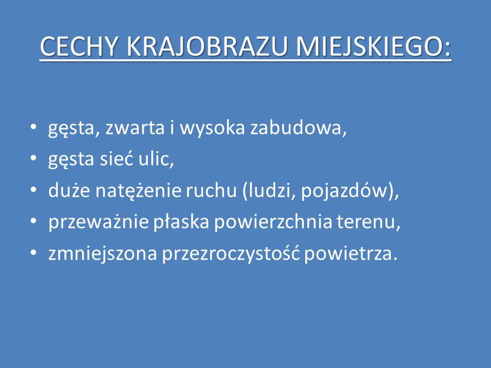 CECHY KRAJOBRAZU MIEJSKIEGO: