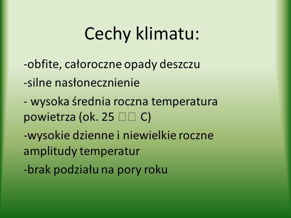 Cechy klimatu: obfite, całoroczne opady deszczu silne nasłonecznienie