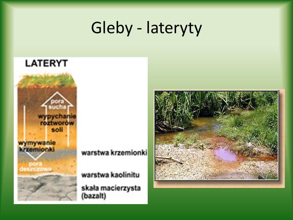 Gleby - lateryty