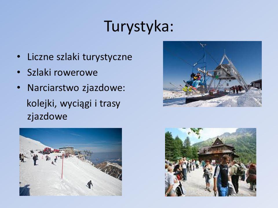 Turystyka: Liczne szlaki turystyczne Szlaki rowerowe
