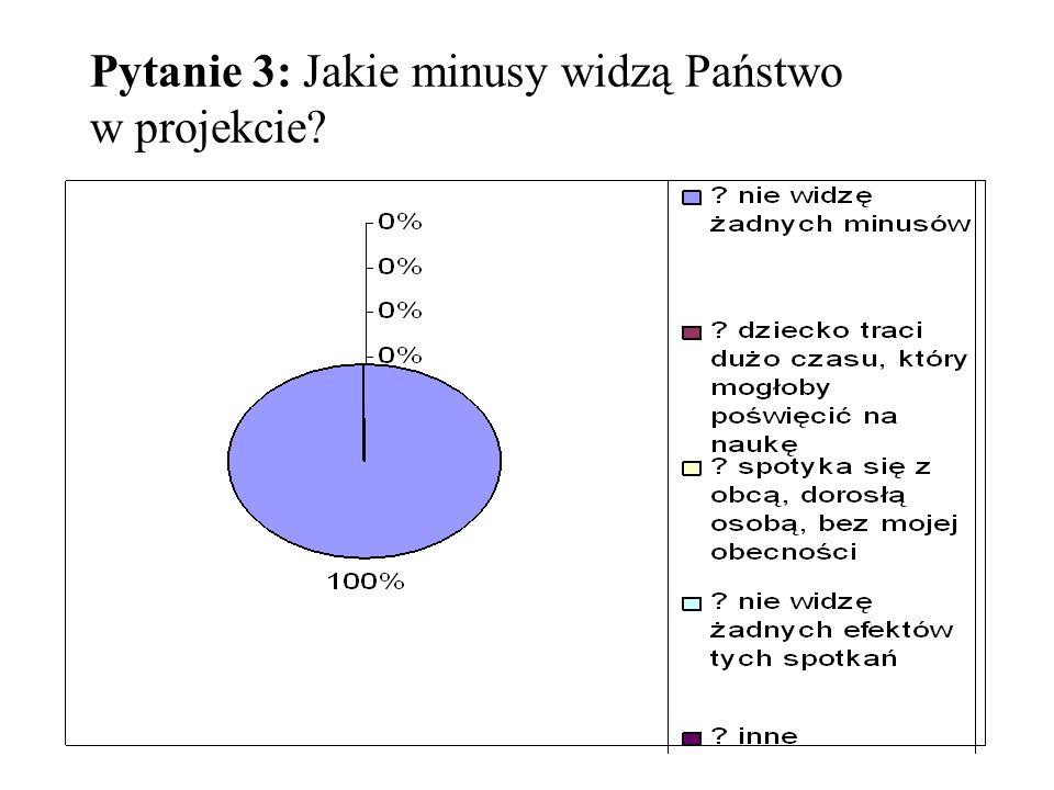 Pytanie 3: Jakie minusy widzą Państwo w projekcie