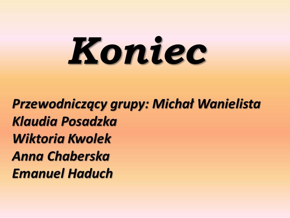 Koniec Przewodniczący grupy: Michał Wanielista Klaudia Posadzka