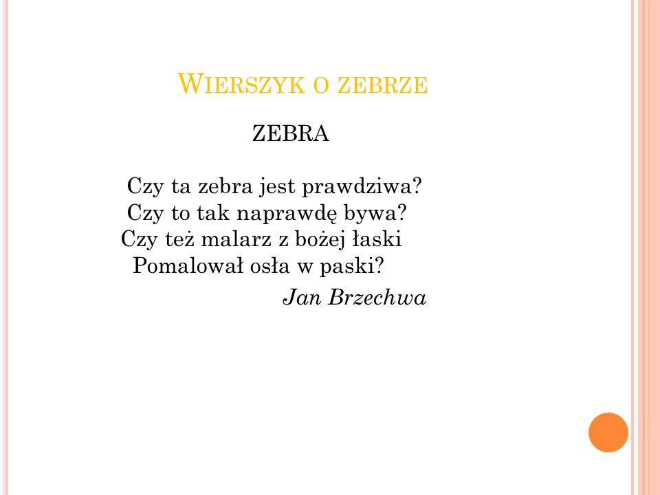 Wierszyk o zebrze ZEBRA Czy ta zebra jest prawdziwa.