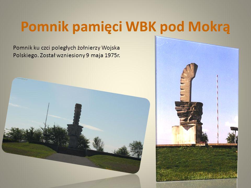 Pomnik pamięci WBK pod Mokrą