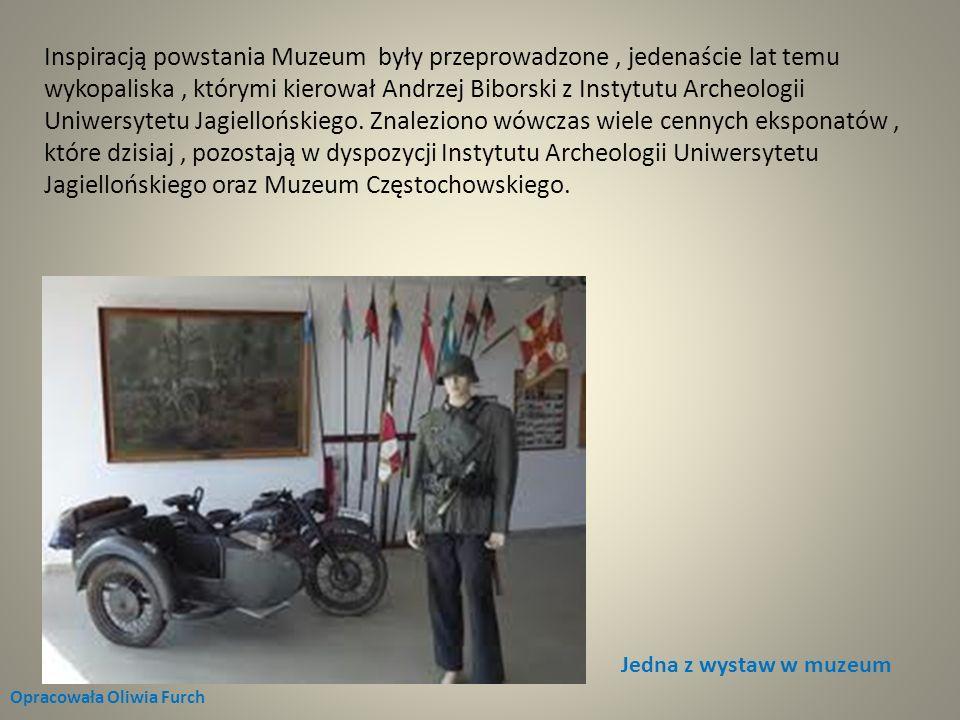 Inspiracją powstania Muzeum były przeprowadzone , jedenaście lat temu wykopaliska , którymi kierował Andrzej Biborski z Instytutu Archeologii Uniwersytetu Jagiellońskiego. Znaleziono wówczas wiele cennych eksponatów , które dzisiaj , pozostają w dyspozycji Instytutu Archeologii Uniwersytetu Jagiellońskiego oraz Muzeum Częstochowskiego.