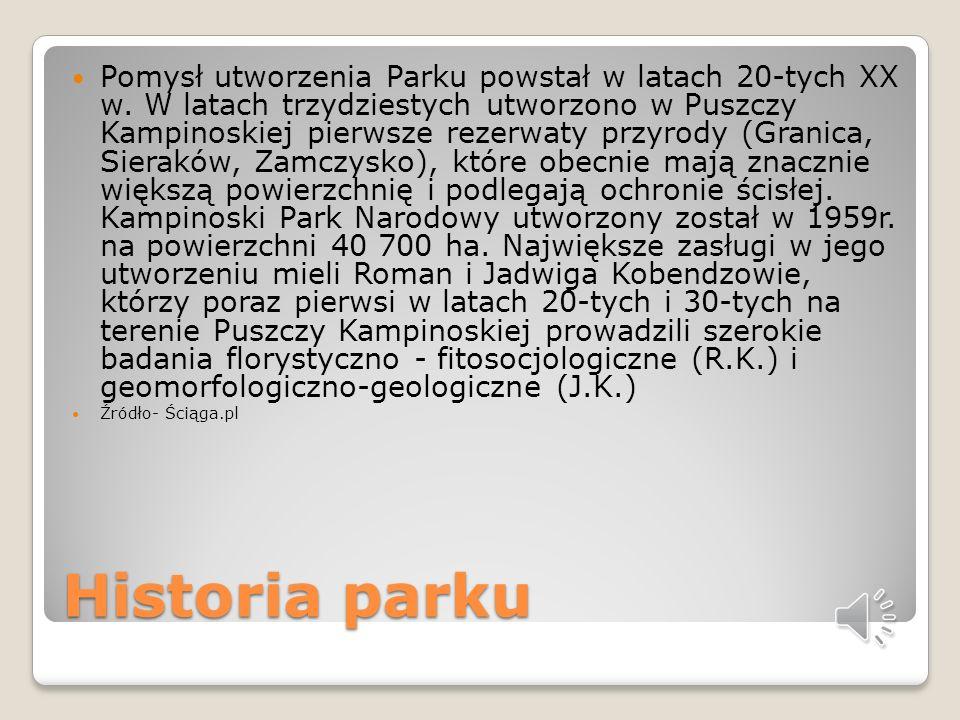 Pomysł utworzenia Parku powstał w latach 20-tych XX w